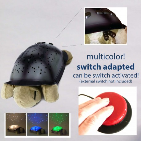 Switch-Adapted Toy Turtle